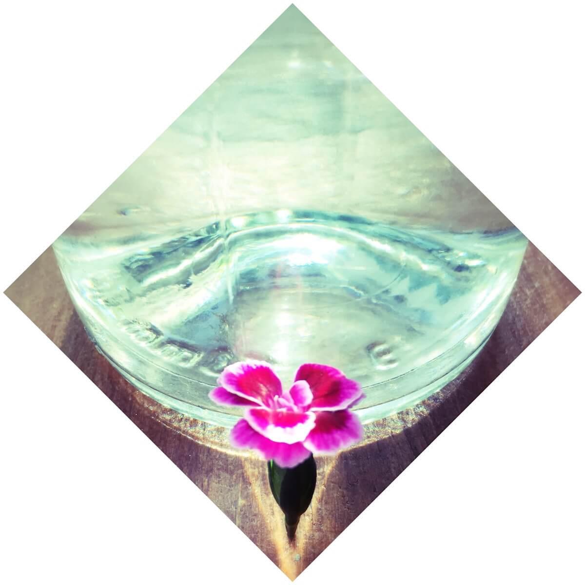 Cycle d'ateliers de Tantra Diamant au Centre Elément